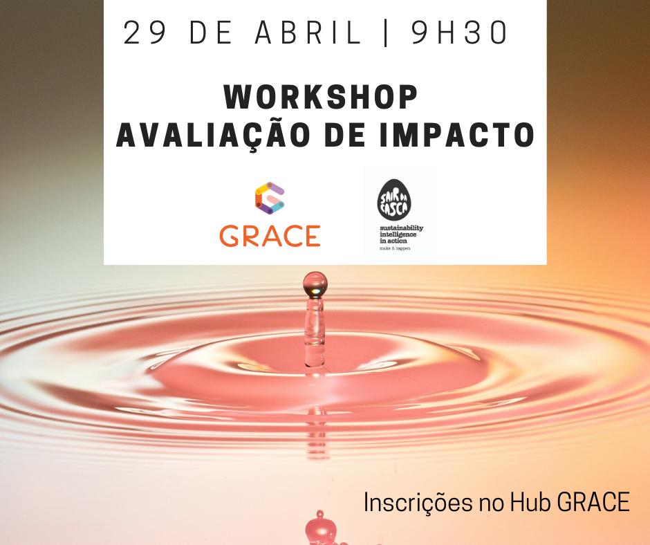 Capacitação GRACE   Workshop Avaliação de impacto (4ª edição)